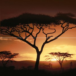 Africa Панно P2-2D210 40х40 (из 2 плиток)