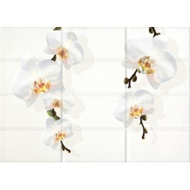 Mono Декор светло-бежевый цветы (MY2M302D) 25x35